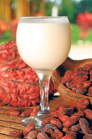 El jugo de cacao es uno de los diversos derivados de este producto que será dest