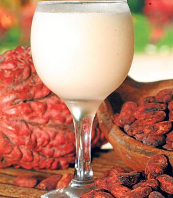 Cacao gourmet