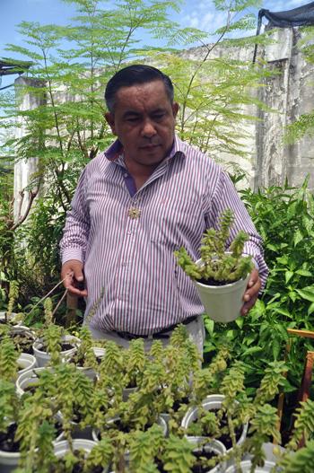 Jaime Arcentales en su vivero ubicado en Durán.