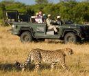 Greater Kruger National Park (Sudáfrica)