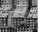 Una sinfonía monocromática y ordenada de edificios.