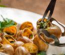 Plato de escargots (caracoles), especialidad francesa.