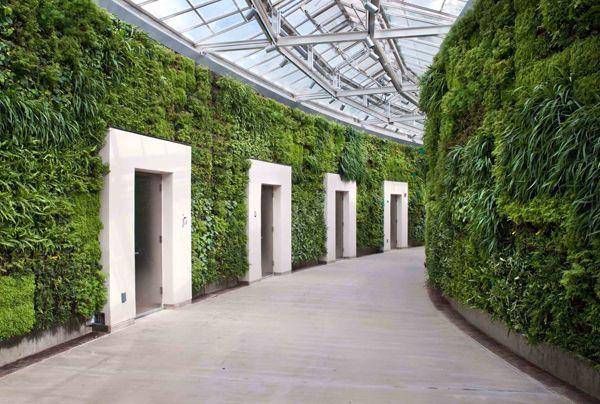 Jardin Vertical Baño:Instalación de muros vegetales en una galería de baños públicos