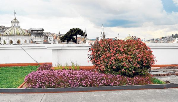 Terrazas verdes vivienda y decoraci n la revista el for Decoracion hogar quito