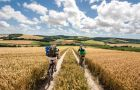 Tramo de la ruta denominada The South Downs Way (Inglaterra).