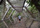 La ruta atraviesa este puente de madera hasta el sitio arqueológico.