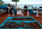 Muelle de pescadores en Puerto Ayora, Galápagos.