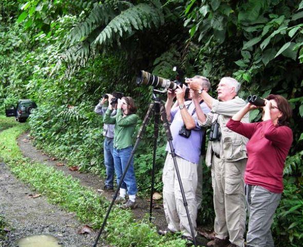 Turistas en pleno avistamiento de aves.