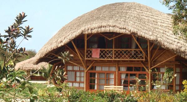 Conciencia ambiental vivienda y decoraci n la revista for Vivienda y decoracion